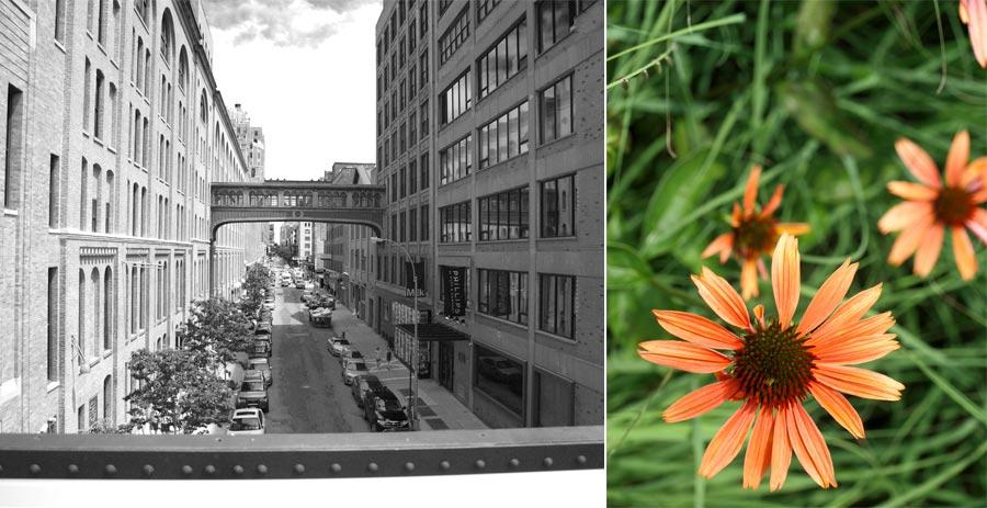 Highline2011_002
