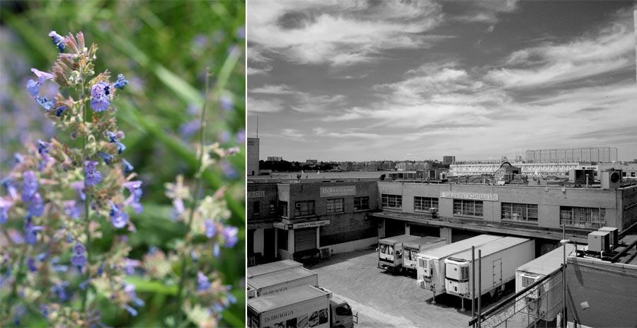 Highline2011_003
