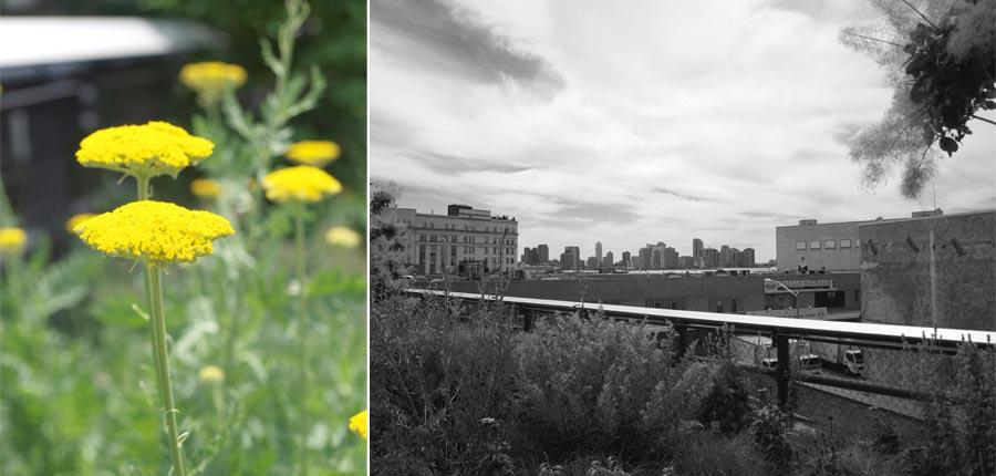 Highline2011_005