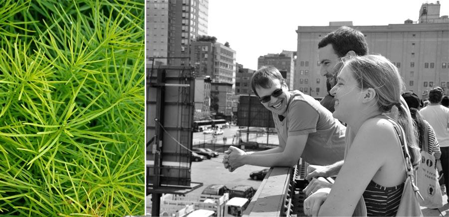 Highline2013_003