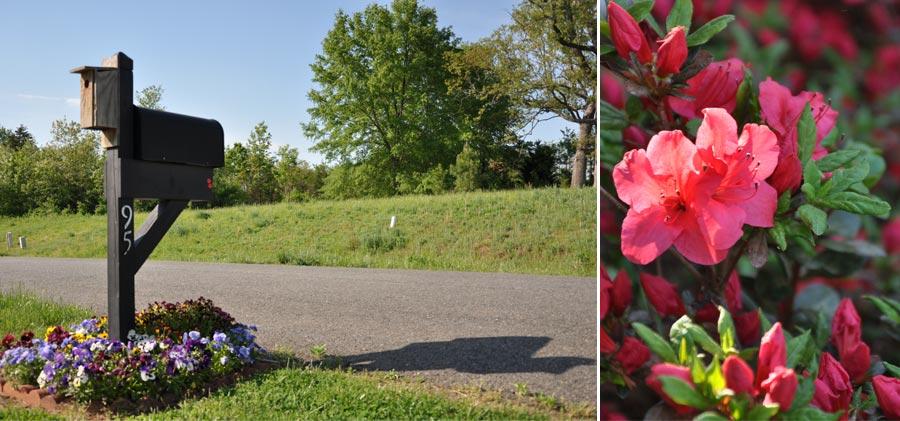 2014spring-flowers_005