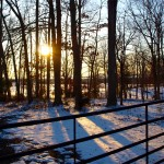 Snowy March Sunset